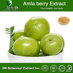 High Quality Phyllanthus emblica L. ,Amla berry Extract 30% Polyphenols 4:1,10:1,20:1