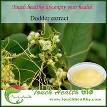 Touchhealthy Supply 10:1 dodder extract semen cuscutae powder cuscuta seed extract