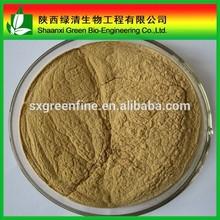 Chinese Herb Semen cuscutae extract/ Dodder Seed Extract/ Cuscuta chinensis Lam Extract