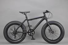 20 inch Fat bike race bike