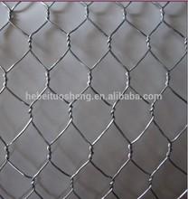 Galvanized hexagonal wire mesh cage for chicken layer