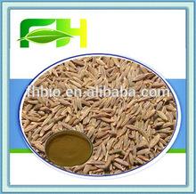 Food Grade Herbal Supplement Fennel Extract