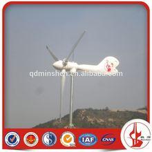 1kw Wind Power Mill