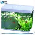 CR-820-El Mayor acuario pez blanco de vidrio y mini acuario pez vitreo con tapa plástica