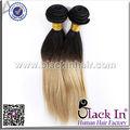 Para trenzar 22 pulgadas color ombre 100% humano de malasia del pelo recto