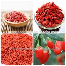 organic goji berry exporter/ningxia goji berry