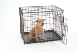 metal wire folding pet house dog cage