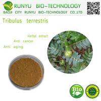 Herbal extract type tribulus terrestris extract anti cancer