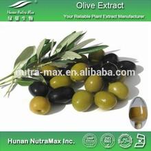 Olive Fruit Extract,Olive Fruit Powder,Olive Fruit P.E.4:1~20:1