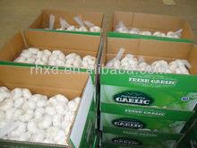 2015 Chinese Nice white garlic fresh natural garlic