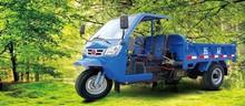 Three Wheeled Trucks