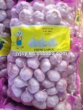 2014 fresh garlic from China jinxiang city