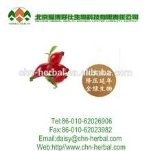 ISO&Kosher 5%-10% Vitamin C Rose Hip Extract