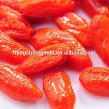 organic goji berries/import goji berries from ningxia ,china
