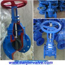 ANSI rubber gate valve extended stem gate valve