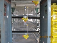 poultry farm H type egg layer chicken cages equipment