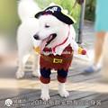 china odm ropa para perros
