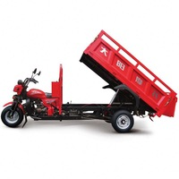 China BeiYi DaYang Brand 150cc/175cc/200cc/250cc/300cc amazing cargo tricycle with seal box