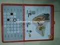 Médico 3d/educativos pared carteles/gráficos con magnético