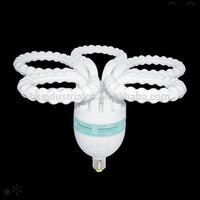 Saudi Arabia market plum energy-saving lamp suppliers