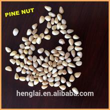 Concessional/Bulk/Excellent Quality /International Market Price/Organic/Bulk Pine Nuts