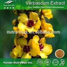 Great Mullein Extract, Mullein Extract, Mullein Leaf Extract