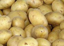 2014 new crop Fresh potato 100-200g in 20kg mesh bag