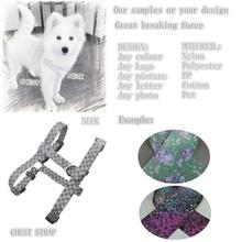 2015 Youhao dog collar OEM Fashion wholesale bright dog collar15010424