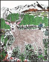 Rili Velvet Doodle Cards with Independent Design