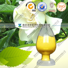 food color plant extract Yellow Color Gardenia Extract