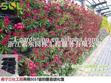 Modulare di parete verde sistema sl-xq5057 Sol attaccatura di parete fioriera