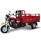 Best-selling Tricycle 200cc three wheel motorcycle with canopy made in china with 1000kgs loading Capacity