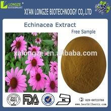 echinacea purpurea powder/echinacea purpurea root extract/echinacea purpurea p.e.