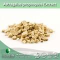 3w fonte astragalus extrato propinquus/astragalus raiz extrato/extrato do astrágalo