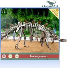 Hot Sale Dinosaur Skeleton for Museum