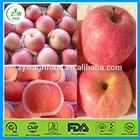 2014 fuji apple/fresh apple fuit specification