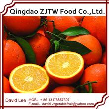 2014 New Crop Best Fresh & Sweet Oranges