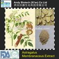 Puro e natural de polissacarídeos 50% alta qualidade astragalus raiz extrato