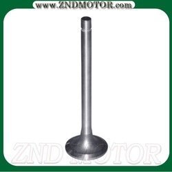 Intake&Exhaust valve for cars,truck,motorcycle