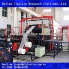 Fruit garlic lemon, plastic packaging net production line