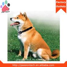 citronella spray waterproof one dog no bark control collar from china