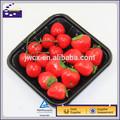 preto e branco de plástico transparente de frutas bandeja de caixa de embalagem