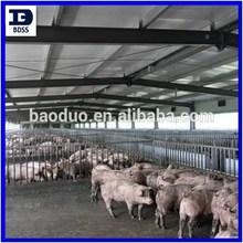 BDSS steel structure pig farm house building