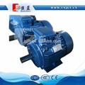motor eléctrico utilizado en el molino de martillo