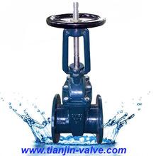 fanged gate valve