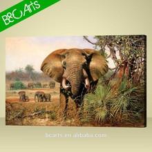 Brown Elephant Photo Print