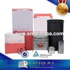 Engine Liner Kit Made In China With MAHLE Piston,Cylinder,Piston Pin,Piston Ring And Snab