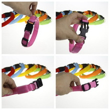Contemporary most popular branded led pet trainer collar