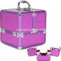 ragazze bellezza trucco gioielli organizzatore cosmetici box caso dei treni borsa regalo di natale