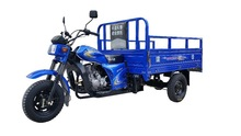 2015 best cheap three wheel motorcycle/ cargo tricycle
